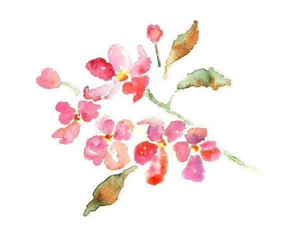 Pink flowers painting watercolor floral art print for Spring flowers watercolor