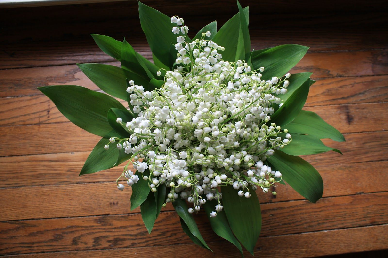 Букет ландыши на 8 марта купить киев, цветов