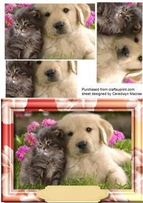 Friends Forever  on Craftsuprint designed by Ceredwyn Macrae - A lovely Pyramid card to make and give to anyone with a lovely dog and Kitten a beautiful card has one greeting tag left blank , - Now available for download!