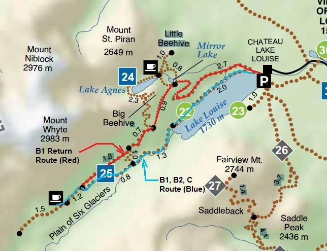 Image result for beehive trail banff | Canada | Banff, Banff ...