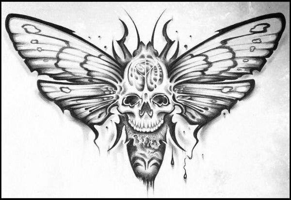 Pin By Haris Pasovic On Skulls Reapers Moth Tattoo Animal Tattoos Moth Tattoo Design