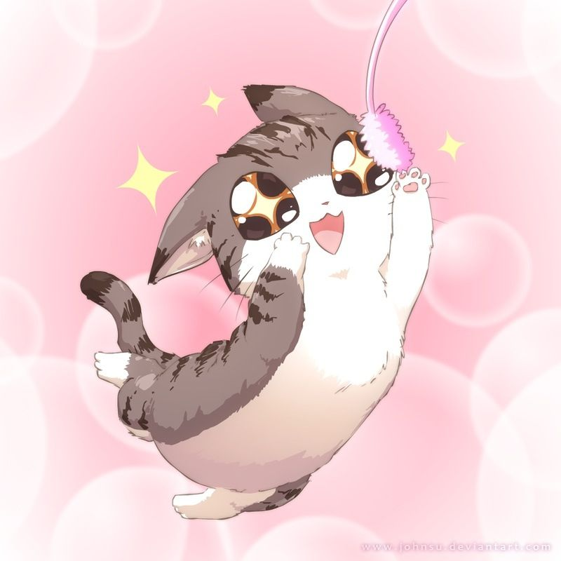 Happy Kitty Cute Anime Cat Kawaii Cat Anime Cat