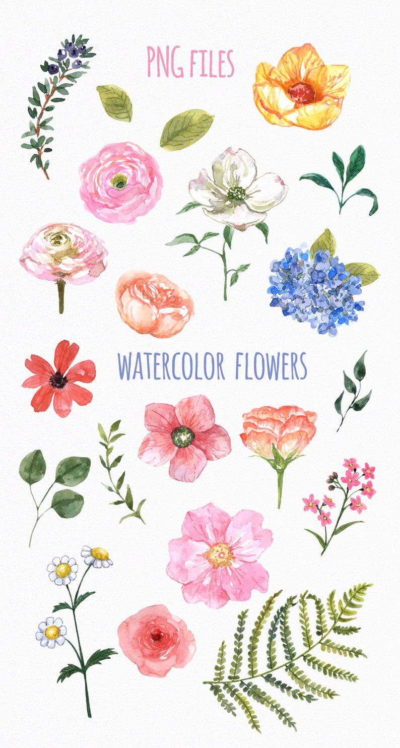 Watercolor Wildflowers Clip Art Spring Cute Floral Clipart Etsy In 2021 Cartoon Flowers Clip Art Nature Watercolor