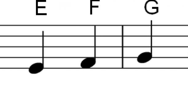 Noten lernen für Anfänger | Music and voices | Pinterest