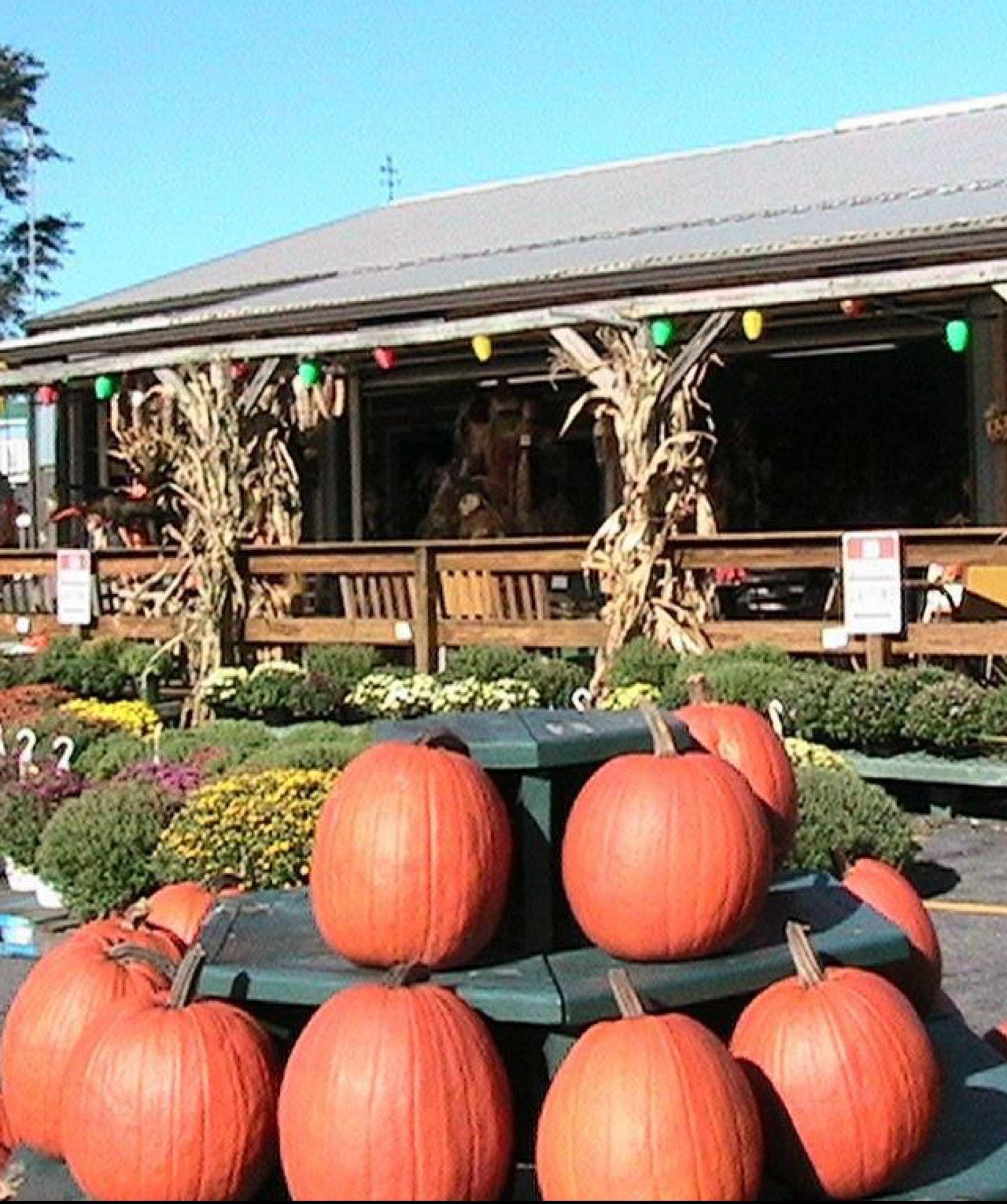 Sycamore Spring Orchard - Jonestown, PA #Yuggler #KidsActivities #Farm