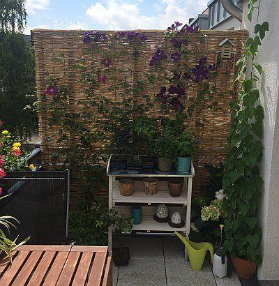 Balkon Sichtschutz aus Bambus selber bauen (mit Bildern