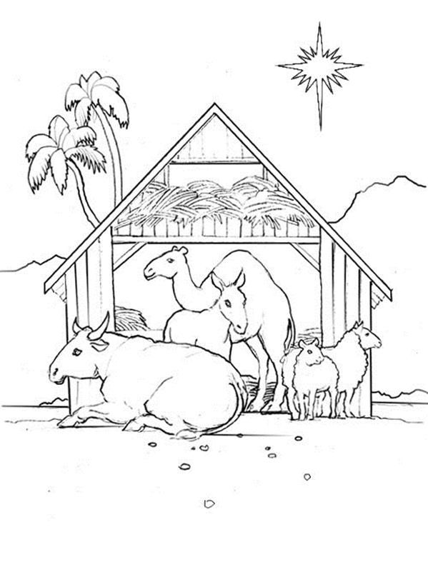 Stable Week 2 Day 1 Animal Coloring Pages Coloring Pages