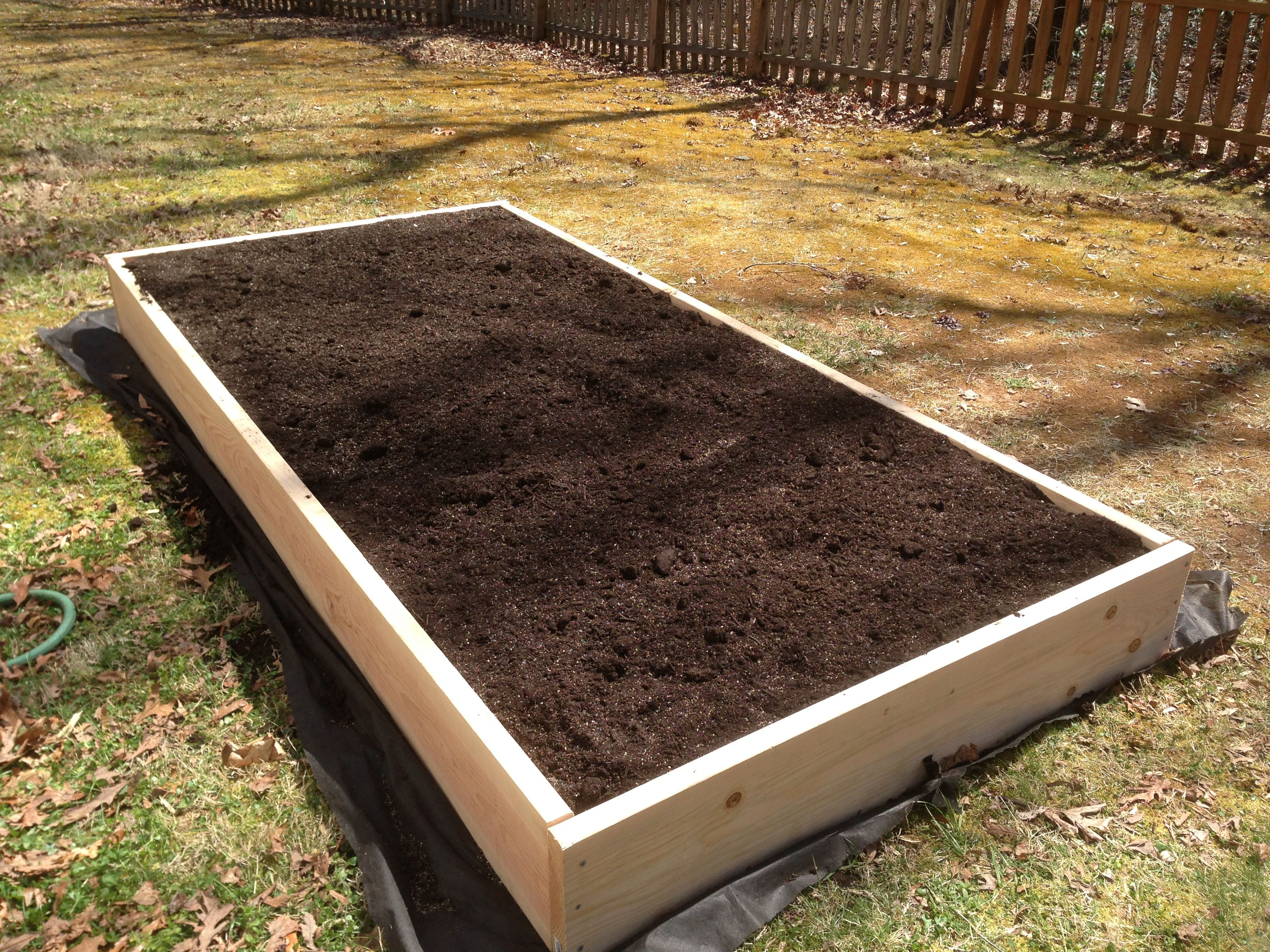 8 x 4 foot raised bed - Filled with Vermiculite, leaf compost and ...