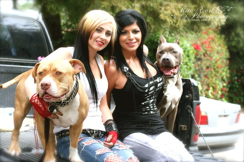 Rita Earl Photography Villalobos Rescue Center Pit Bulls Parolees Pitbull Rescue