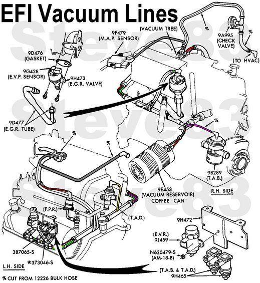 Vaclinesefi Jpg Typical Efi Vacuum Lines  V8 Shown  I6