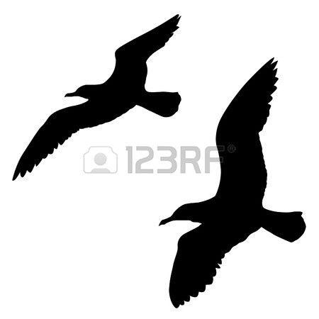 Silhouette Of The Sea Gull On White Background Illustration Silueta De Aves Arte De Silueta Pajaro Silueta
