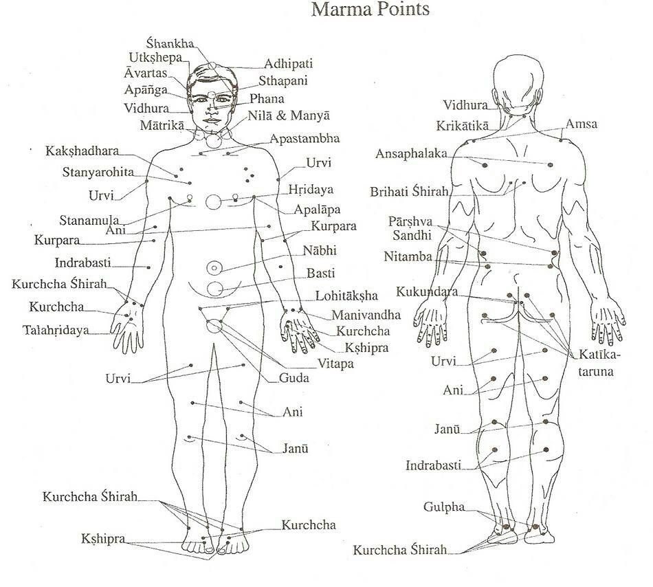 Essential oils for marma chikitsa point massage infographics ayurveda pinterest acupressure and yoga also rh