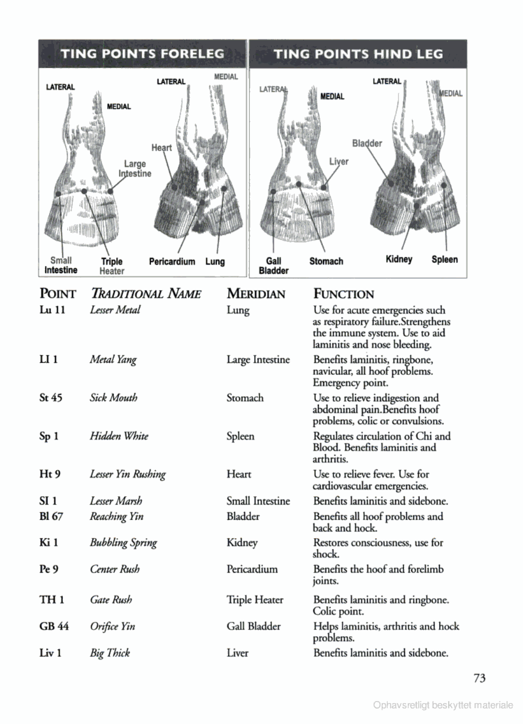 Tidsmæssigt Image result for equine ting points   Horse Health   Equine EY-62