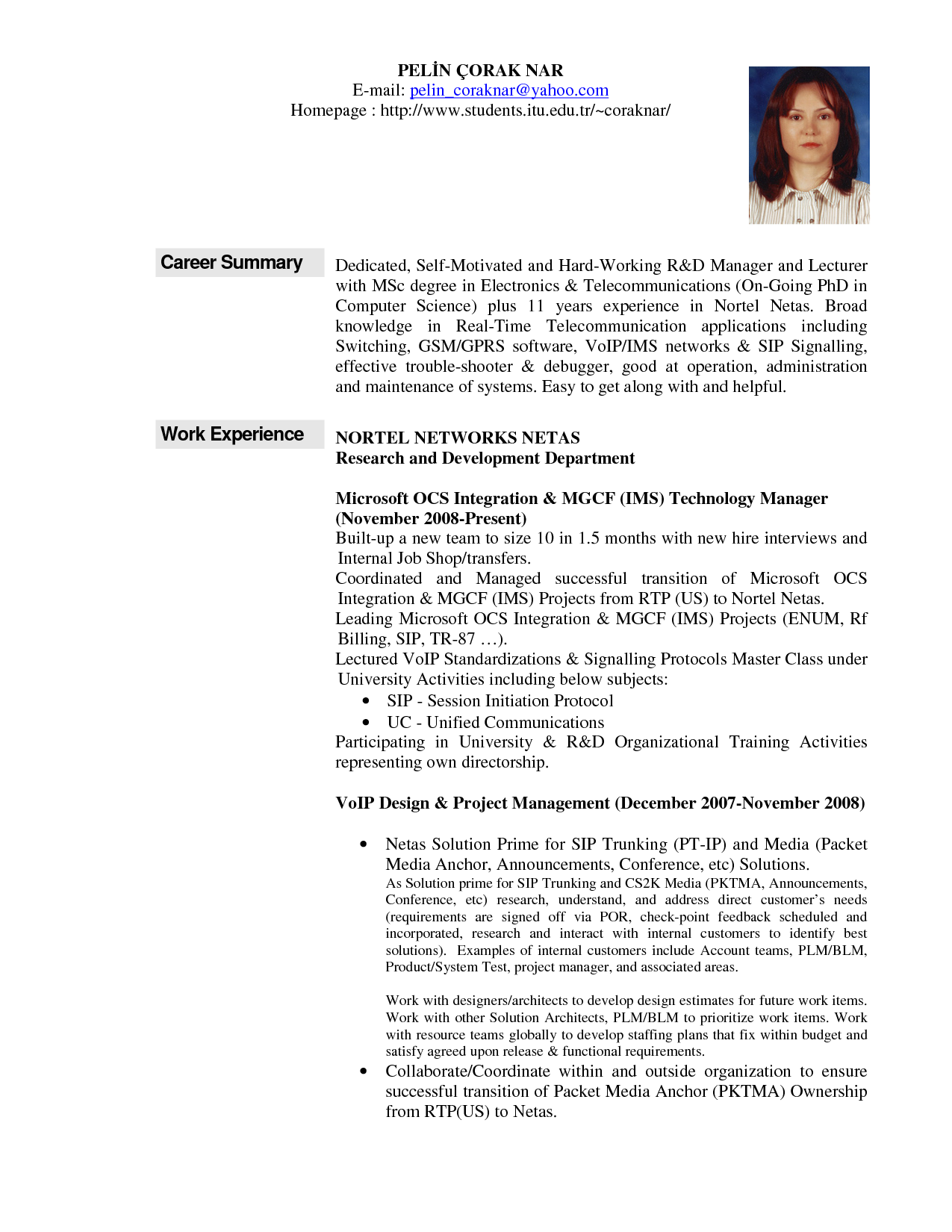 Elegant Professional Summary Resume Examples For Template Profile