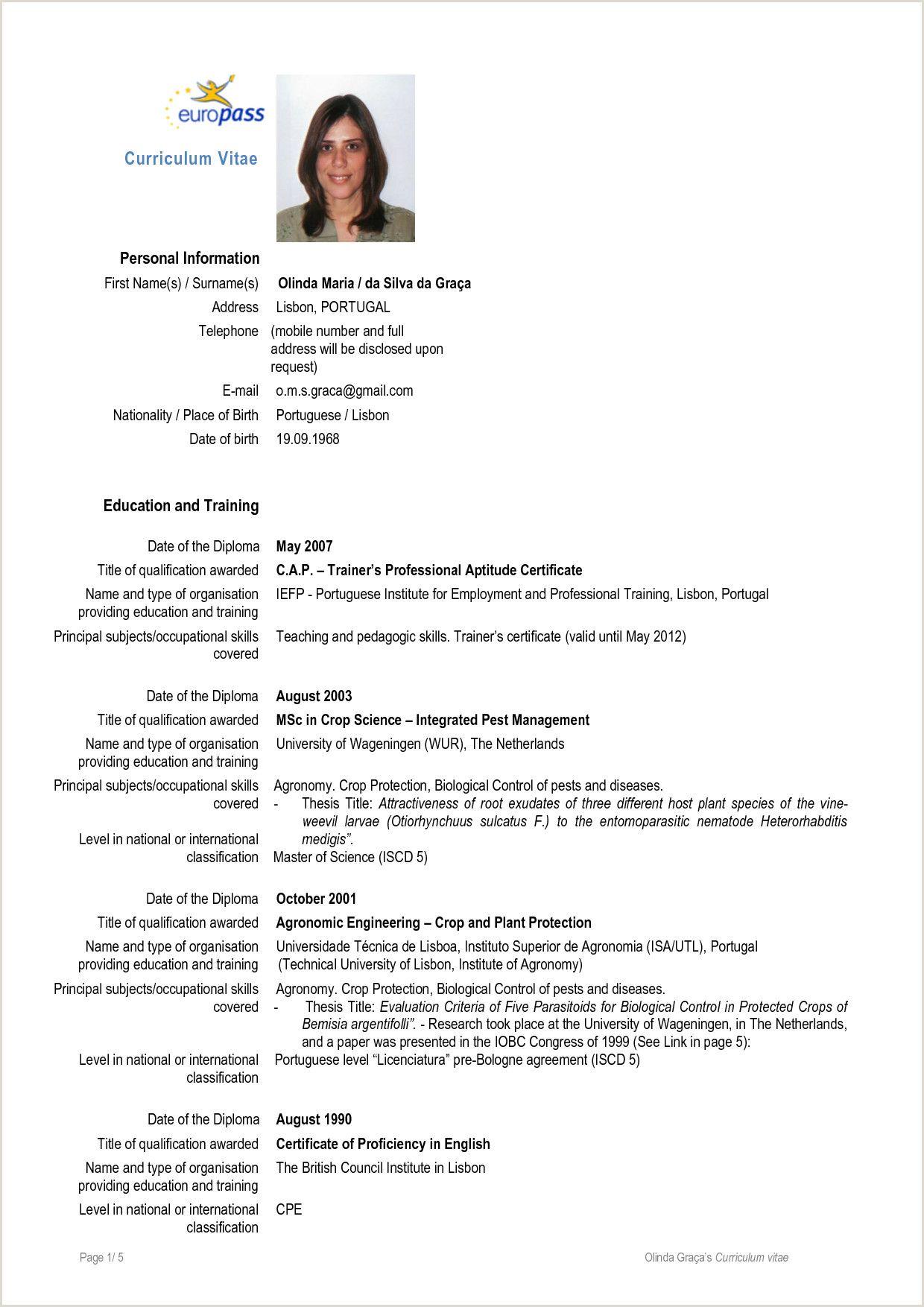 Europass Cv Format In Word Nel 2020 Scuola