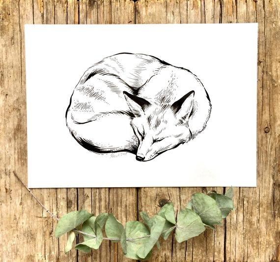 ORIGINAL Bild Fuchs, Tusche Zeichnung schlafender Fuchs