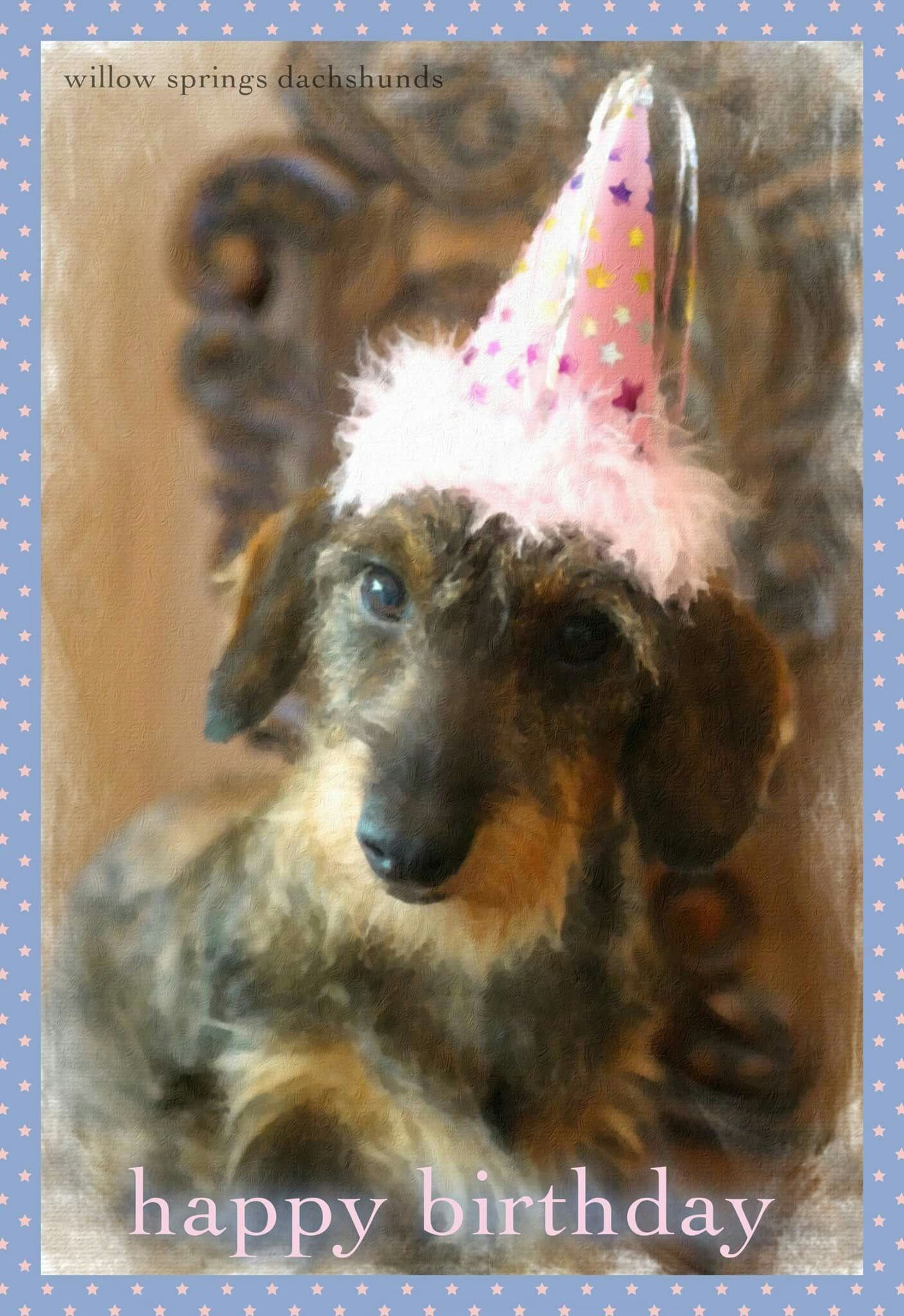 Birthday wirehaired zi de natere pinterest dachshunds birthday wirehaired kristyandbryce Choice Image