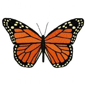 Download Monarch Butterfly Free embroidery design available at falconembroidery.com #Machine_Pattern #Free_Embroidery_Design  #Download_Free_Machine_Designs