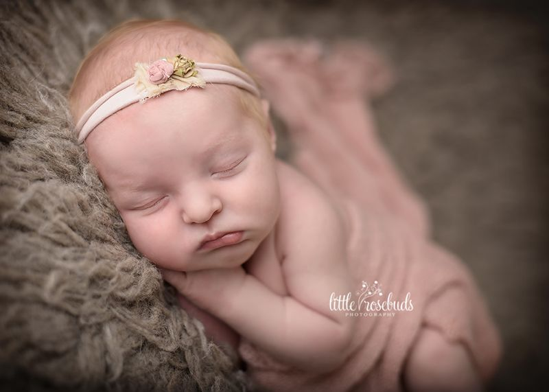 Newborn photographer in hamilton burlington oakville little rosebuds photography family and maternity portraits