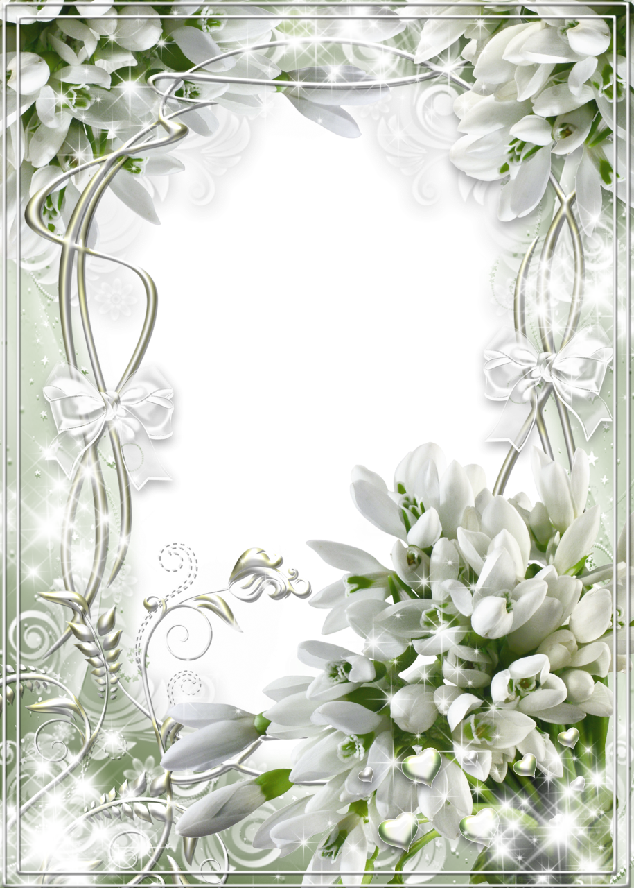 Beautiful white soft transparent frame with snowdrops boardes beautiful white soft transparent frame with snowdrops izmirmasajfo