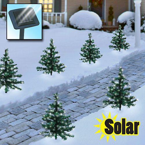 pretty nice 57b9e d61f0 Solar-powered lighted walkway trees illuminate walkways ...