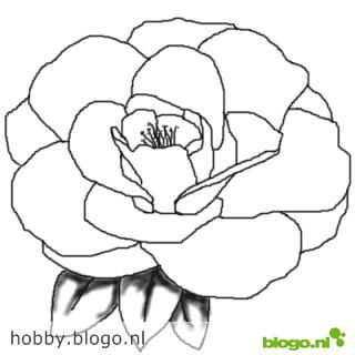 Tekening Simpel Roos Gif 320 320 Drawings Flower Drawing