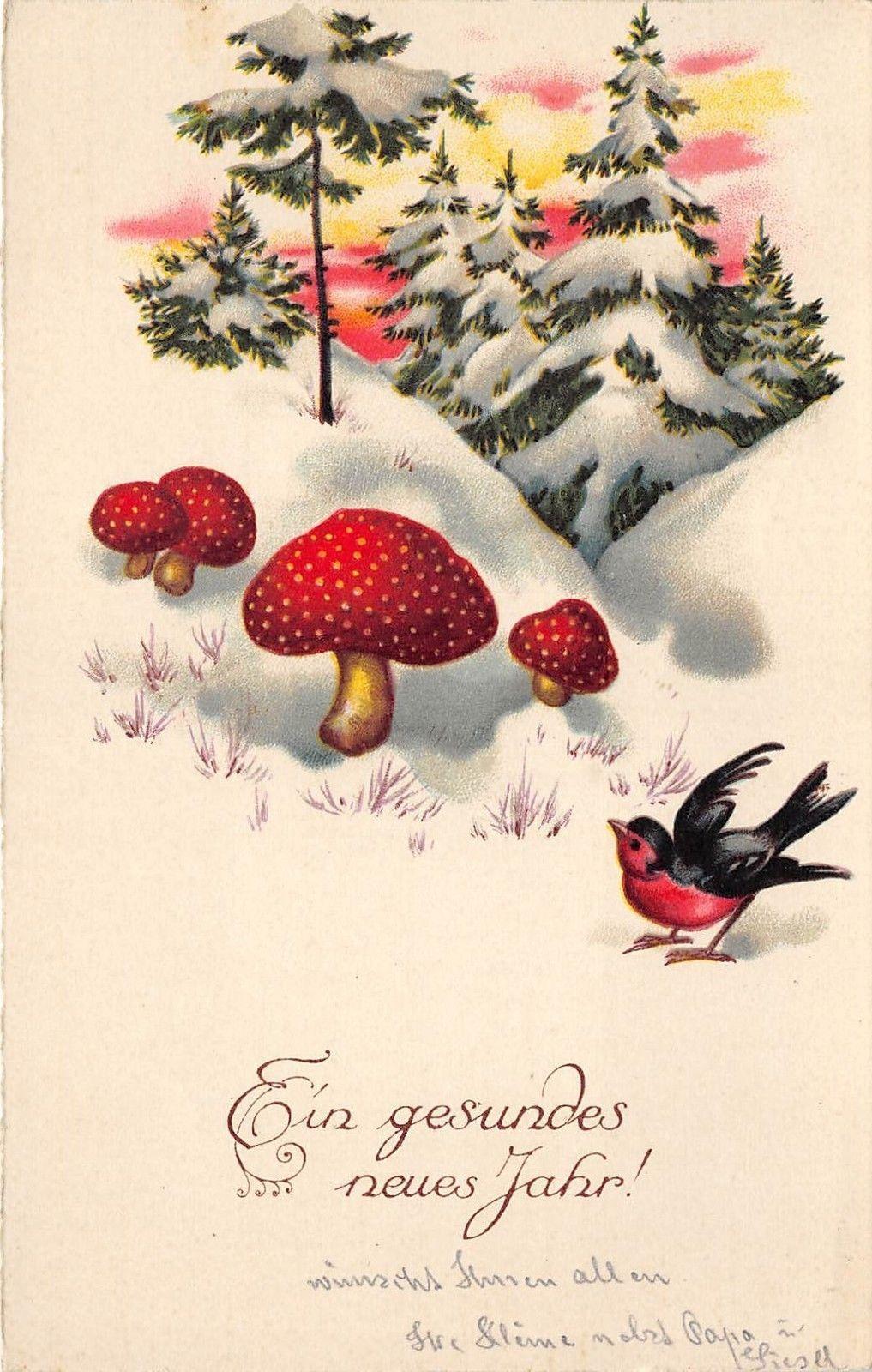 Bg8657 Mushroom Sparrow Bird Neujahr New Year Greetings Germany In