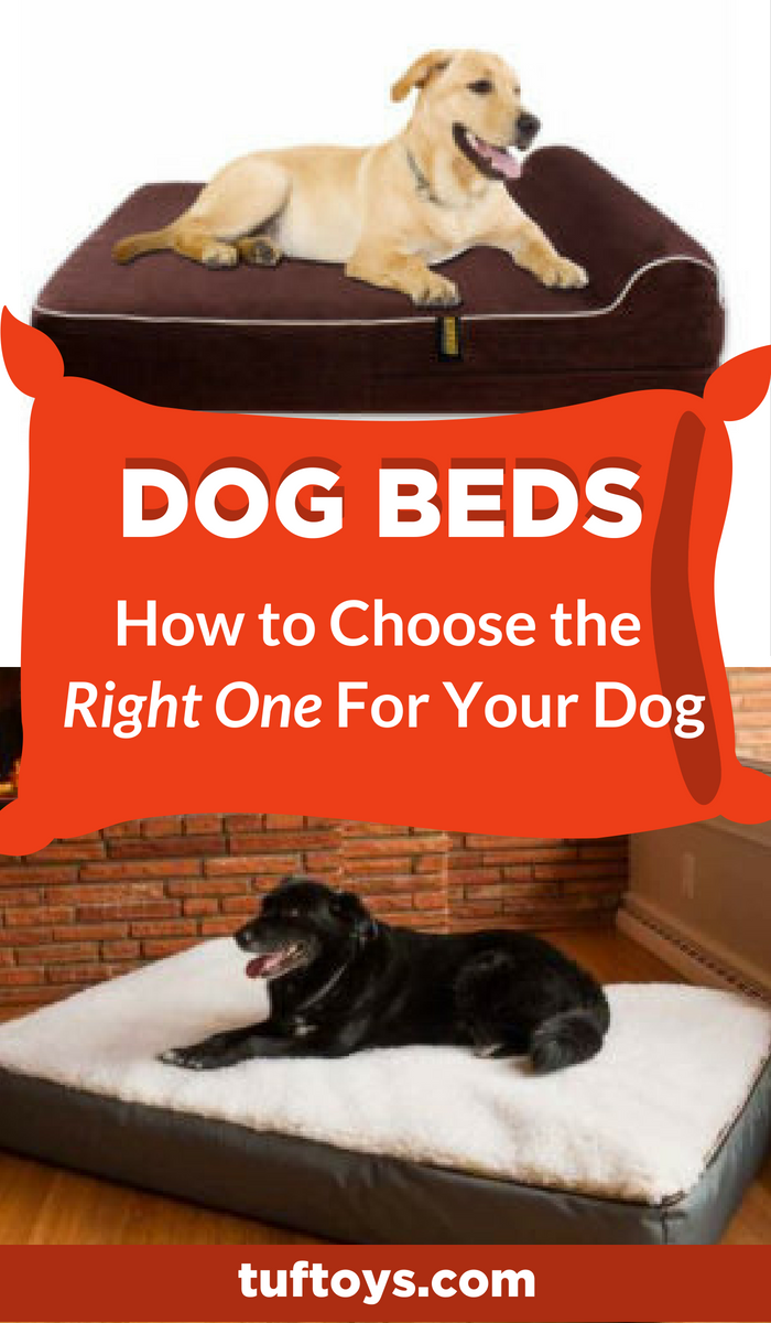 How To Choose The Right Dog Bed Dog bed, Your dog