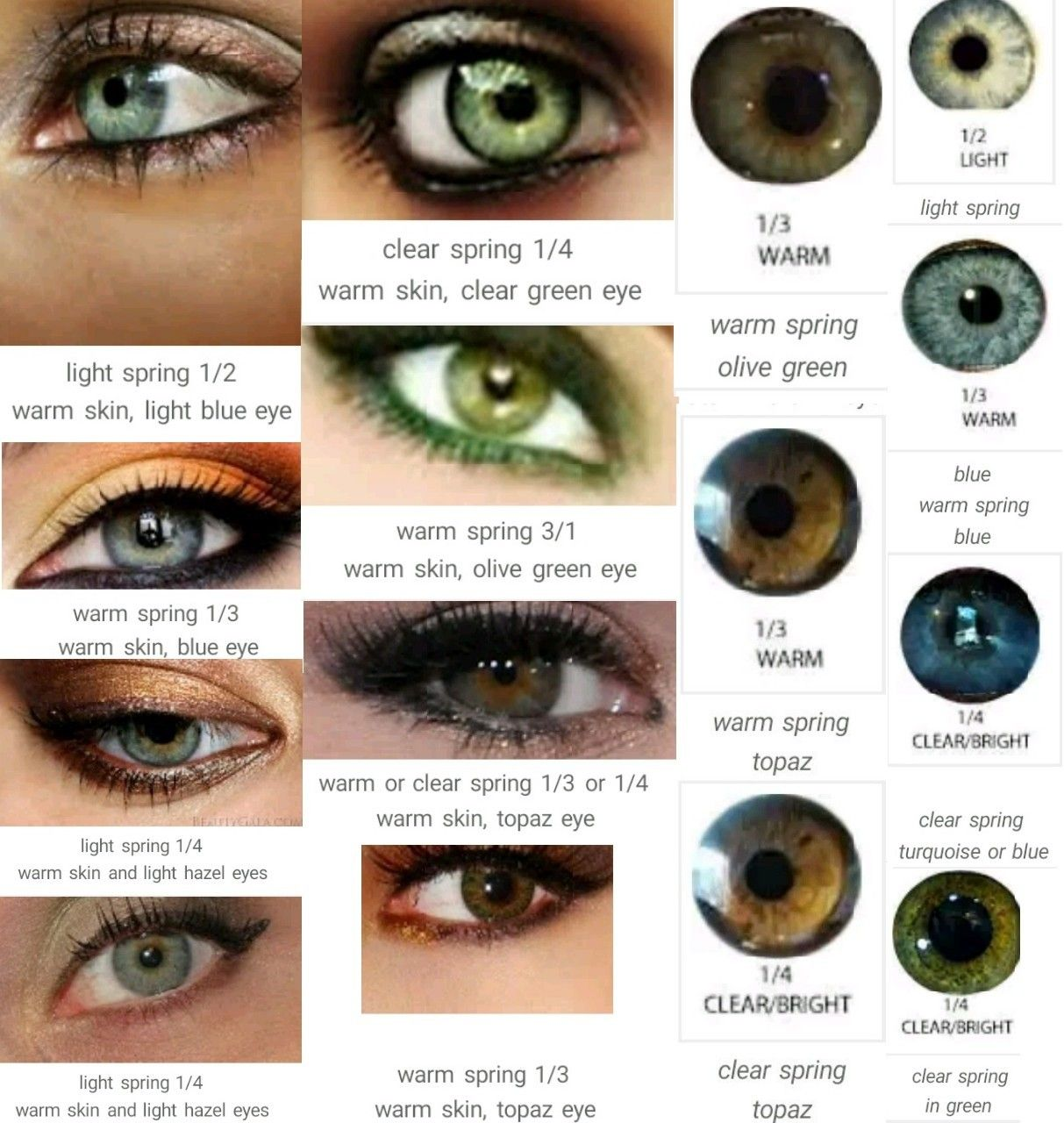 Warm or Clear Spring Eye | My Eyes | Hair colour for green ...