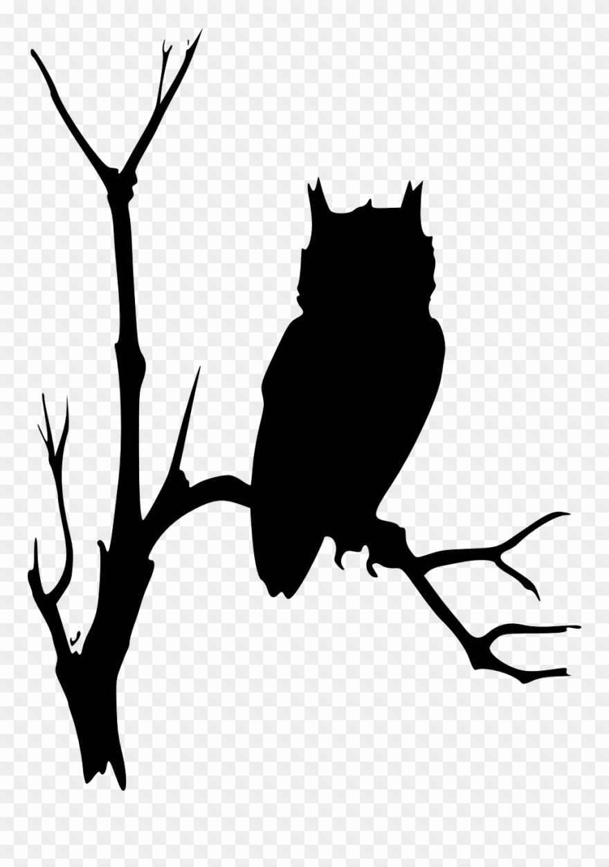 Owl In Tree Silhouette Clipart ... | Animal silhouette ...