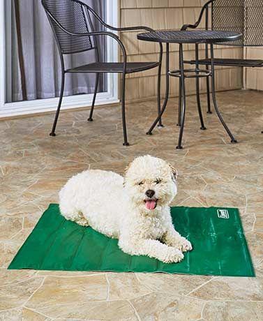 Coleman Pet Cooling Mats Pet Cooling Mat Waterproof Dog Bed