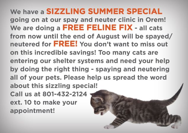 Now Through The End Of August Fix Any Cat For Free At The Spay Neuter Clinic In Orem By Appointment Only With Images Animal Society Cats Animals