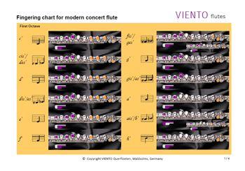 Fingering Chart For Western Concert Flute  Flute Practice