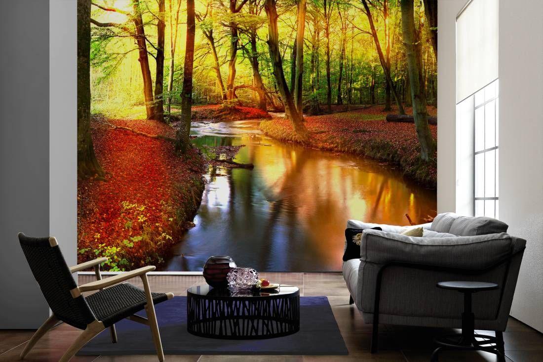 Fototapete / Vliestapete: Forest Stream, Nature. Motiv: 2,00x1,33 m ...