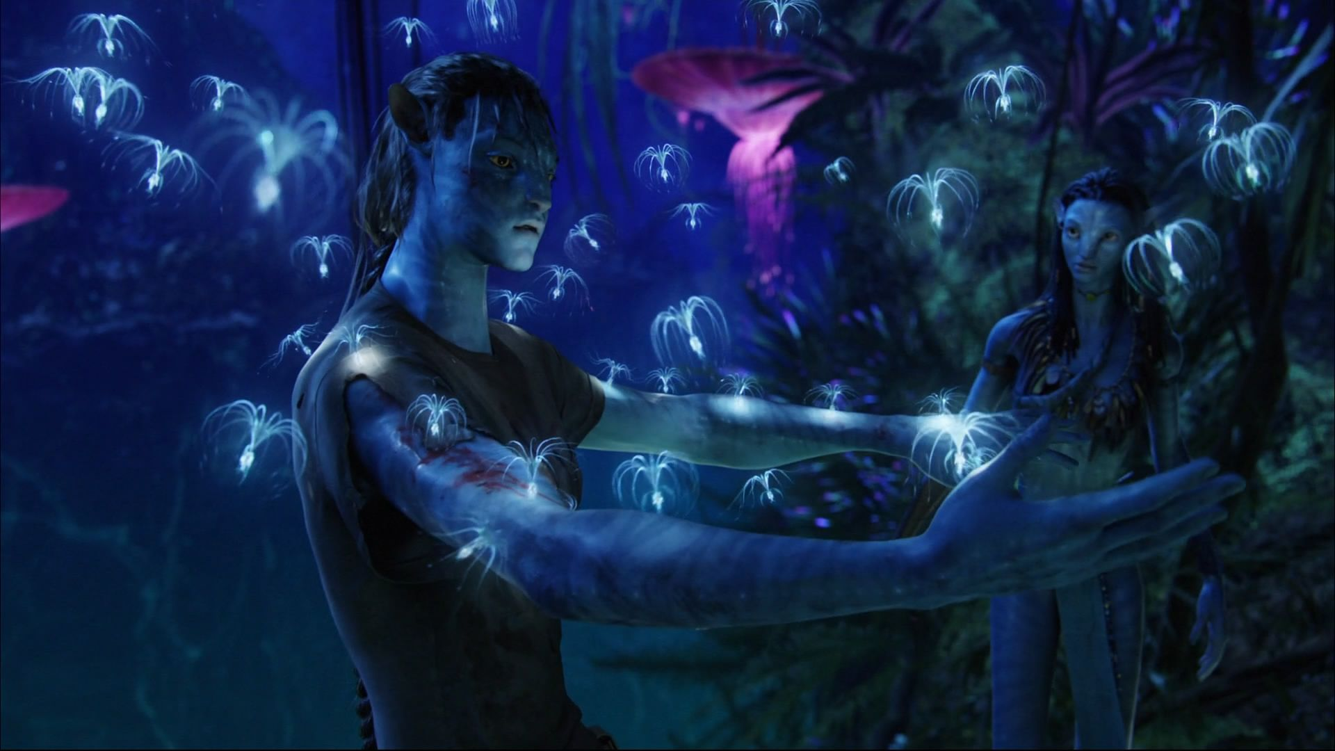 243 Avatar Hd Wallpapers Backgrounds Wallpaper Abyss Avatars