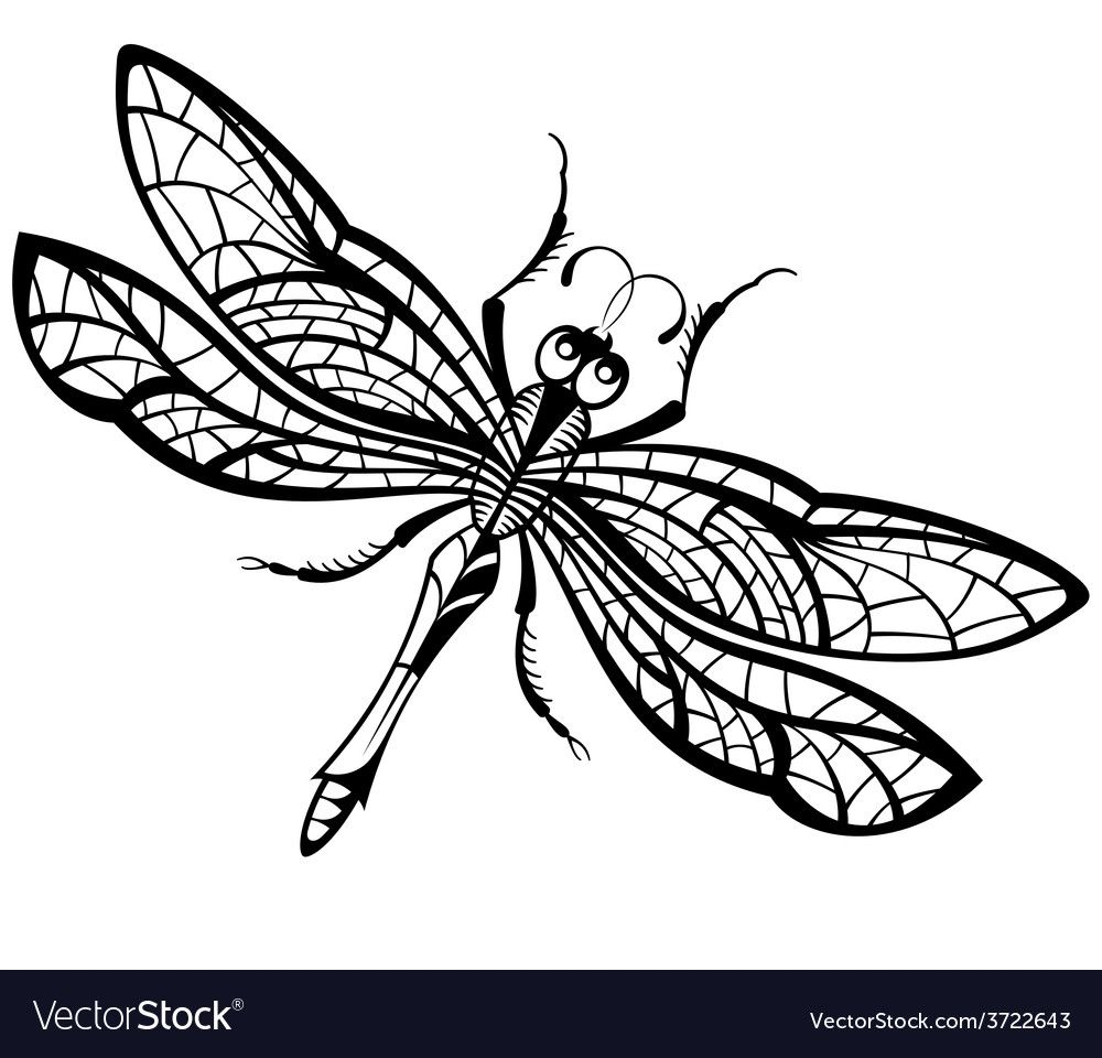 Vector Dragonfly Download A Free Preview Or High Quality Adobe Illustrator Ai Eps Pdf And High Resolution Dragonfly Illustration Dragonfly Clipart Dragonfly