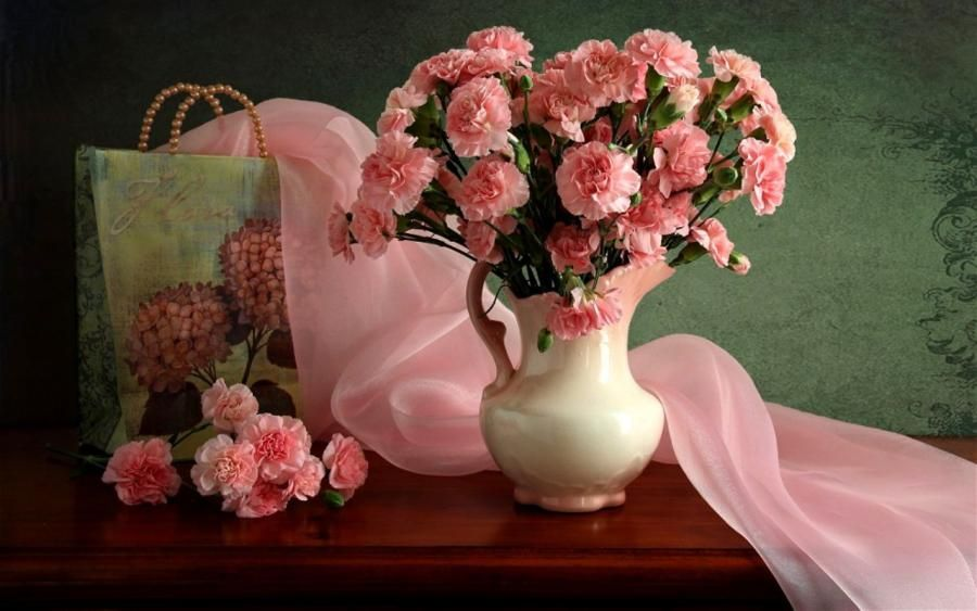 Carnation Still Life Pink Rose Pictures Hd Flowers Pink Carnations