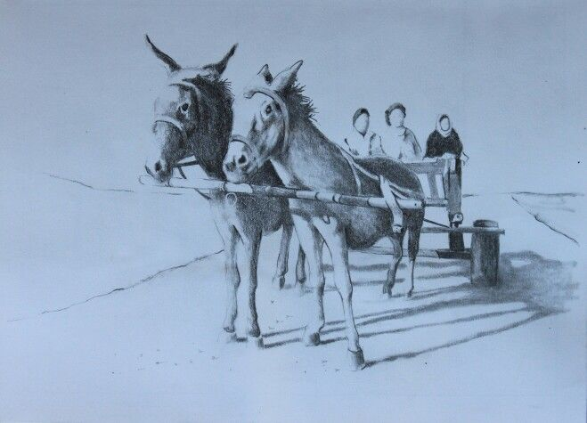 Donkey cart drawing
