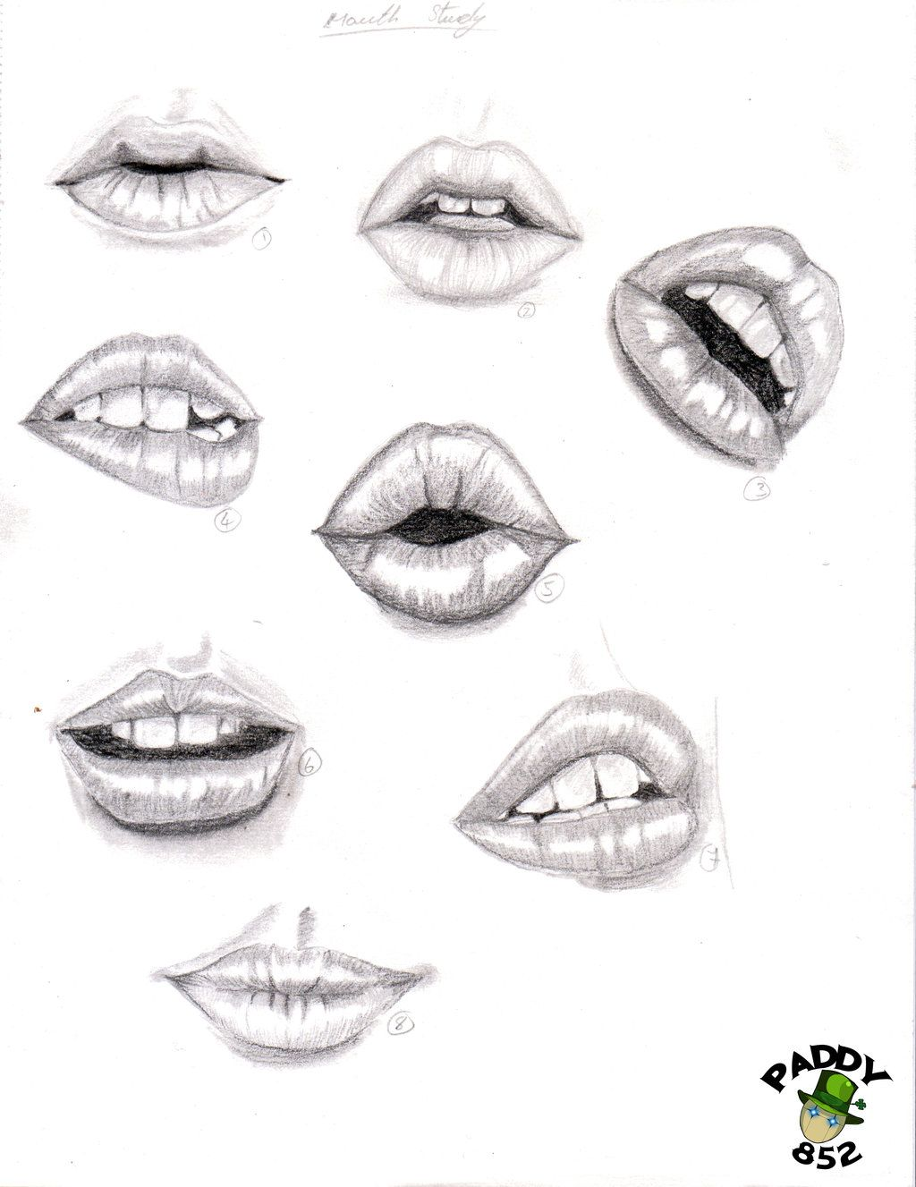 Line Drawing Nose : Lips drawing study of by paddy traditional art