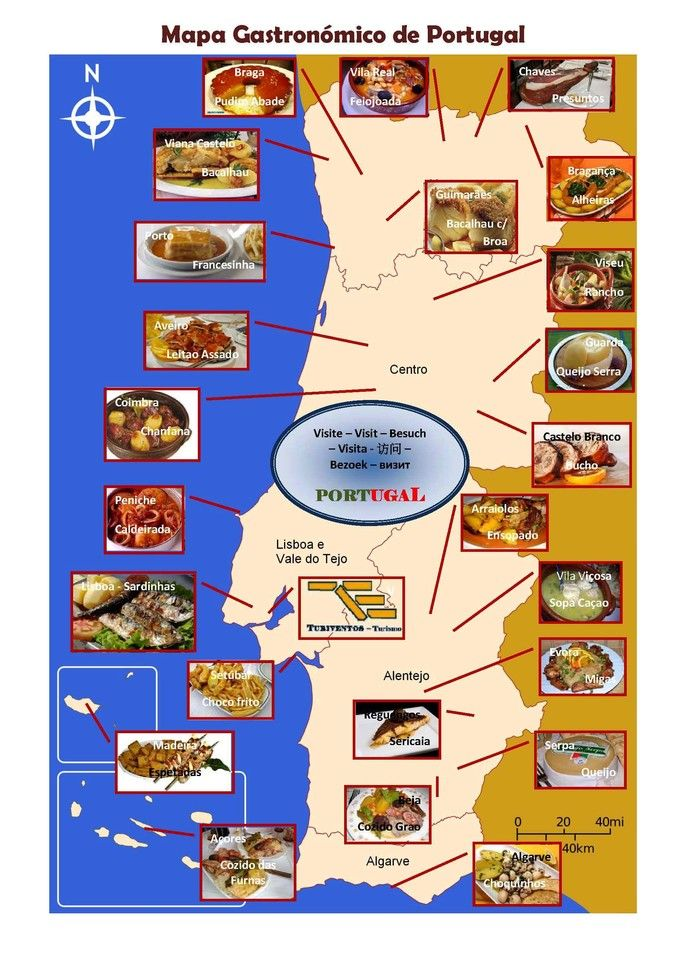 mapa turistico de portugal EN   Gastronomic Map of Portugal   TURIVENTOS   Turismo e Eventos mapa turistico de portugal