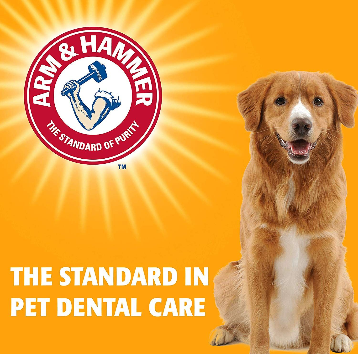 Arm And Hammer Ora Play Denta Saurus Gator Dental Chew Toy For Dogs Best Dog Chew Toy Click Image For More Dog Dental Care Pet Dental Care Dog Chew Toys