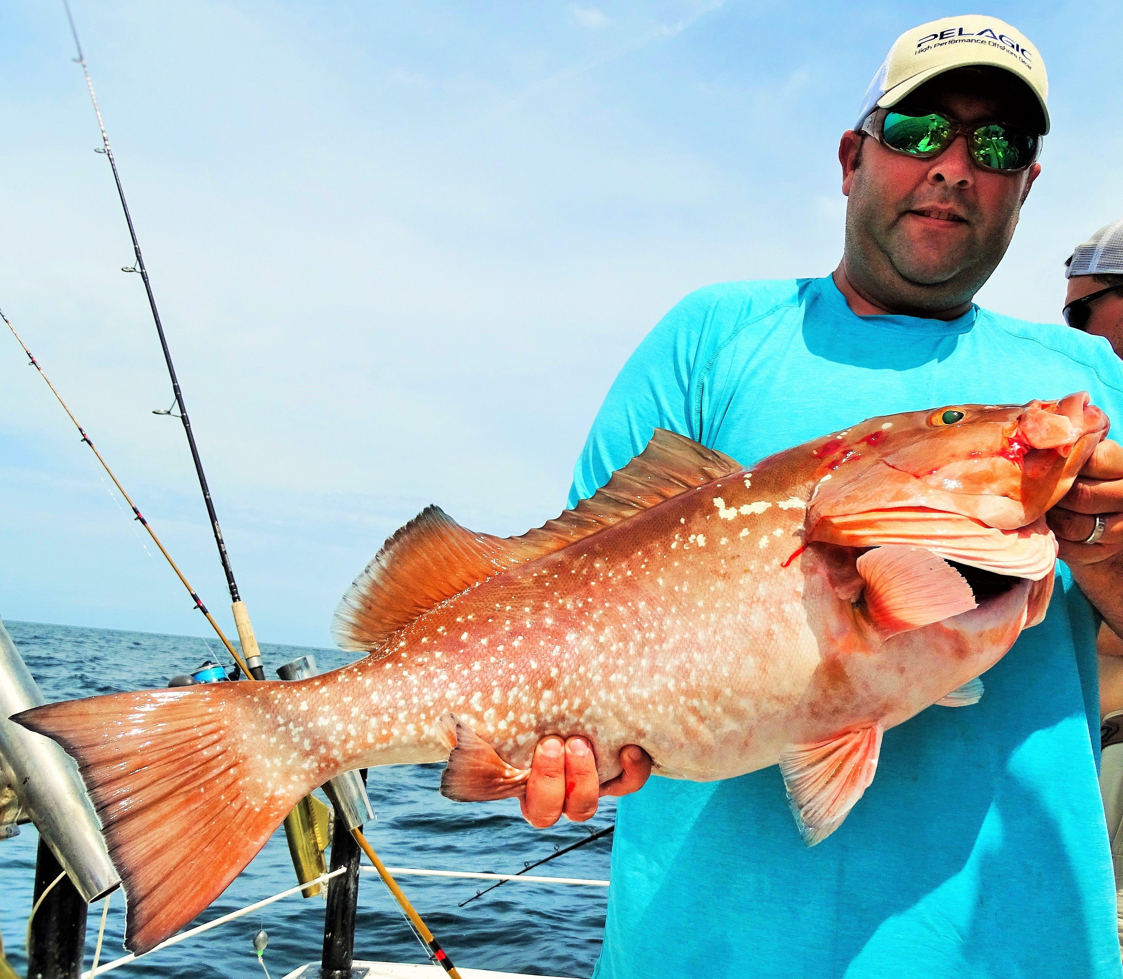 Fishing trips information deep sea fishing charters gulf
