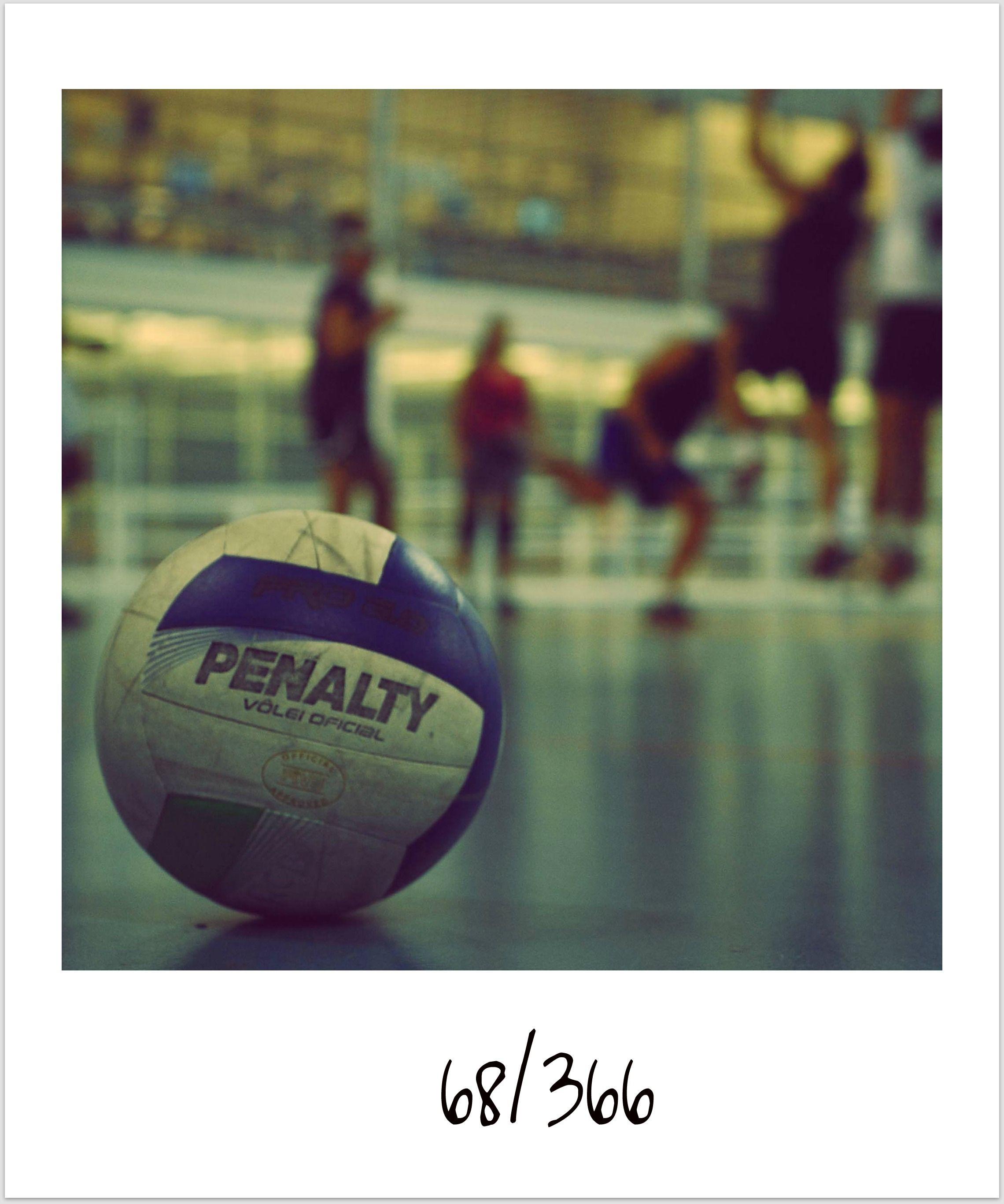 Volleyball Volleyball Volleyball Players Volleyball Sports