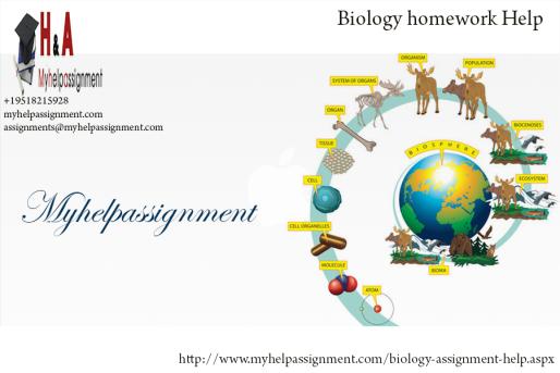 Homework help biology high school