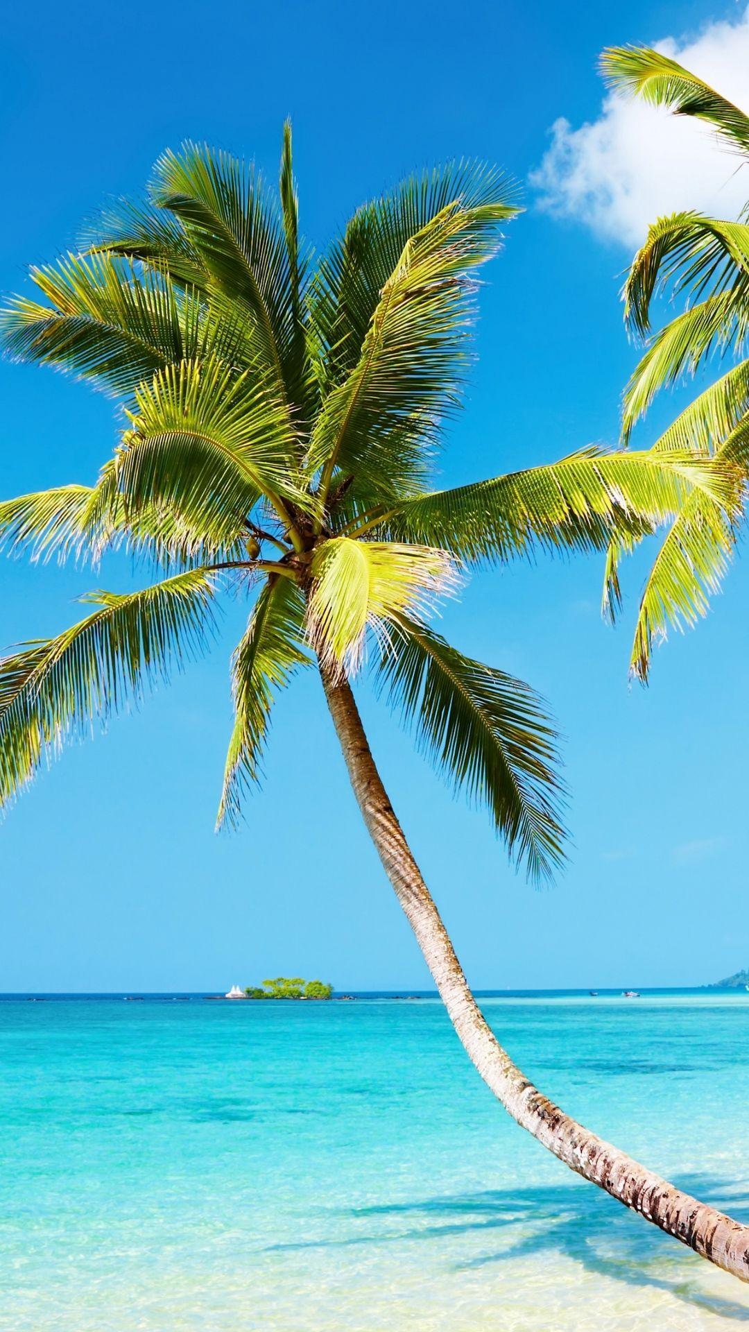 1080x1920 4k Wallpaper Beach Nature Beach Iphone 6 Plus 1080x1920 Wallpaper Beach Wallpaper Iphone Beach Wallpaper Iphone Wallpaper Tropical
