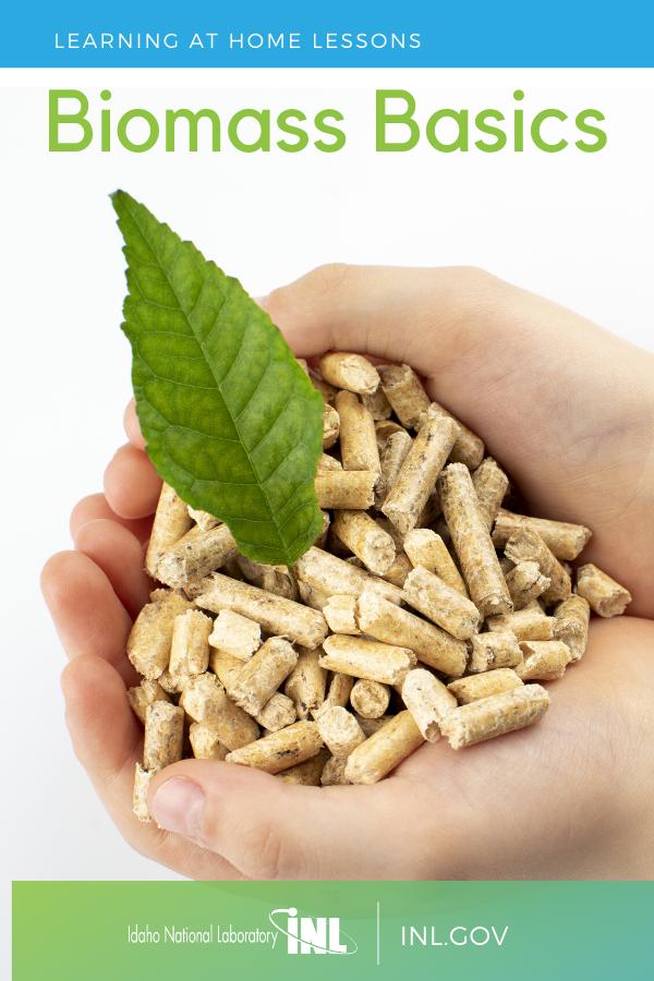 What Is Biomass Biomass Basics Stem Resources Biomass Stem Lesson
