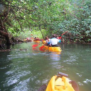 Triple kayaks available  Kayak - Wailua, Your River Kayaking