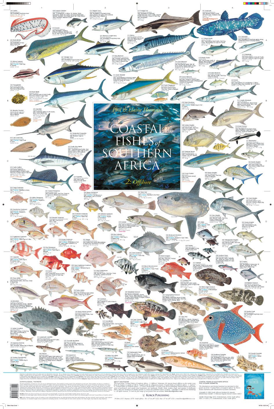 Coastal Fishes Of Southern Africa 2 Offshore Marine Fish Water Animals Sea Fish