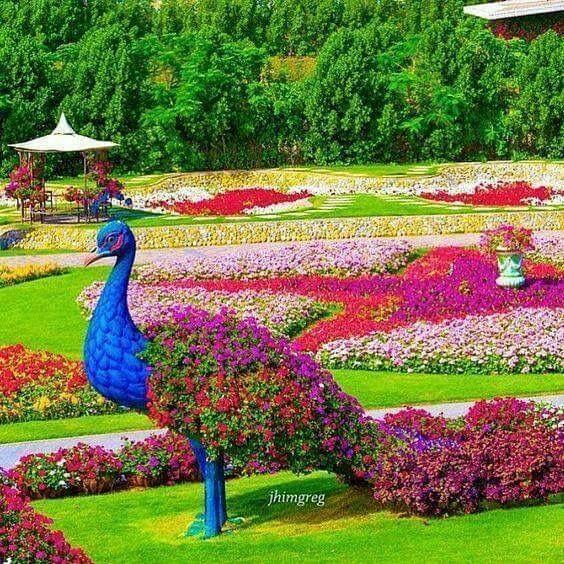 57 Amazing Beautiful Garden Ideas Inspiration And: Miracle Garden, Gorgeous Gardens