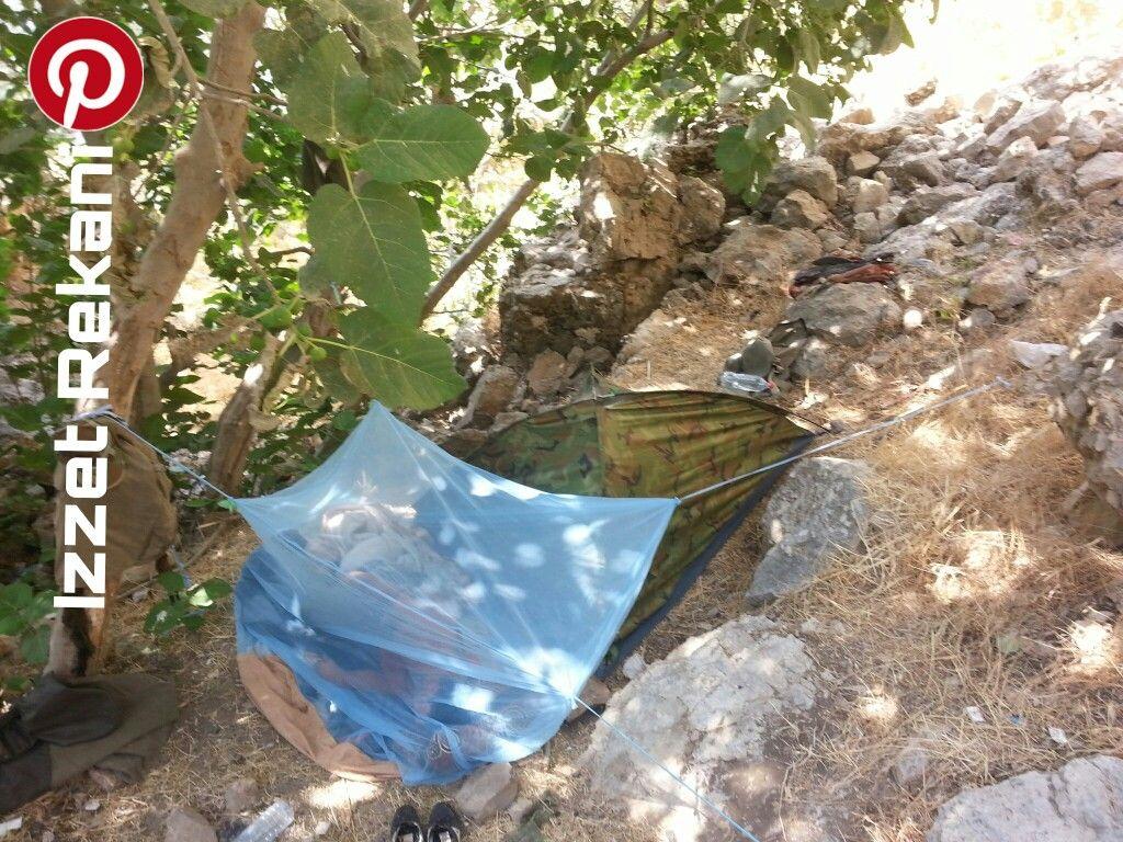 Good Sleeping Kurdistan (With images) Ted baker icon bag